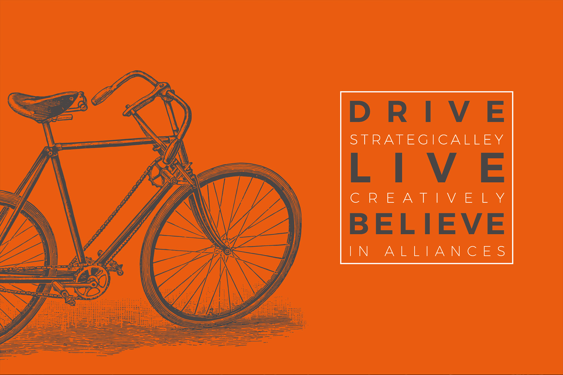 DLB Drive Live Believe